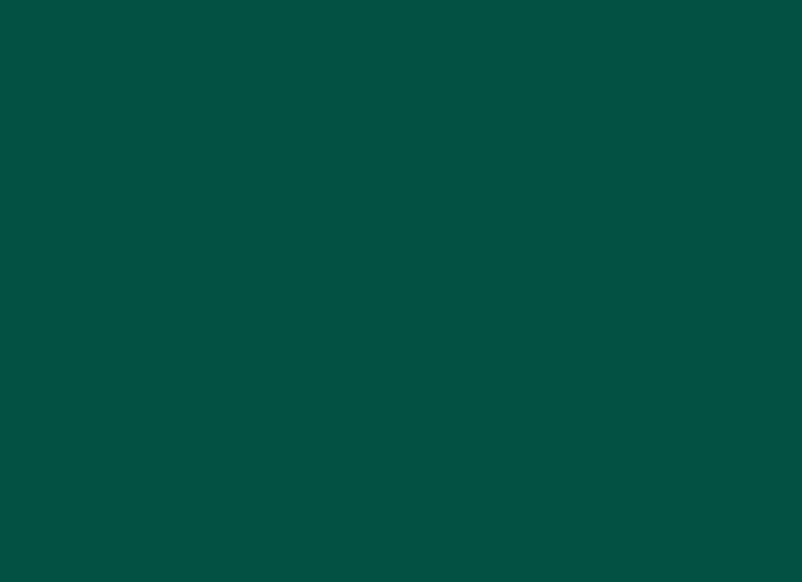 Beech Frame Lacquered Grass Green