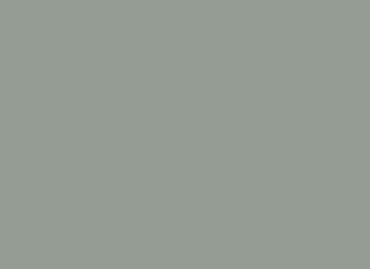 Beech Frame Lacquered Light Grey