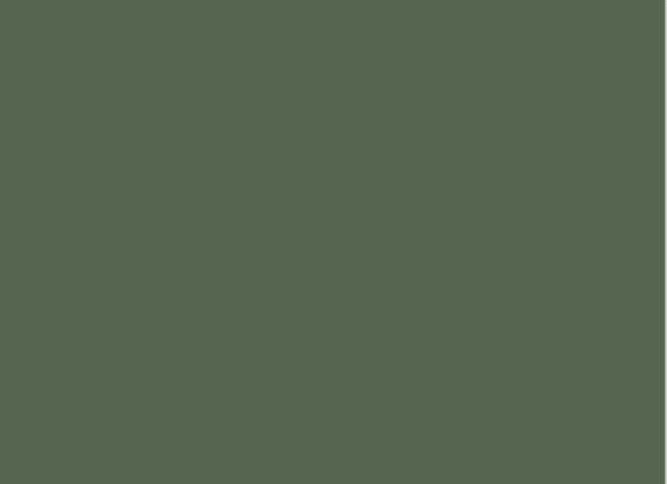 Beech Frame Lacquered Olive Green