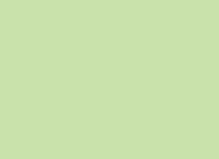 Beech Lacquered Pale Olive Green 1020-G60Y