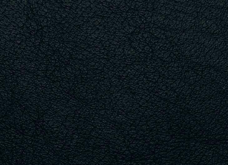 Black Elegance Leather Seat and Back