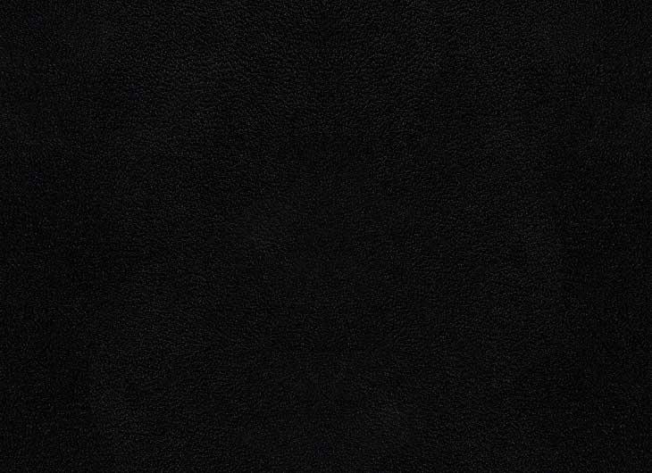 Black Hide Seat