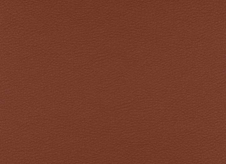Extra 13Y246 Terra Leather