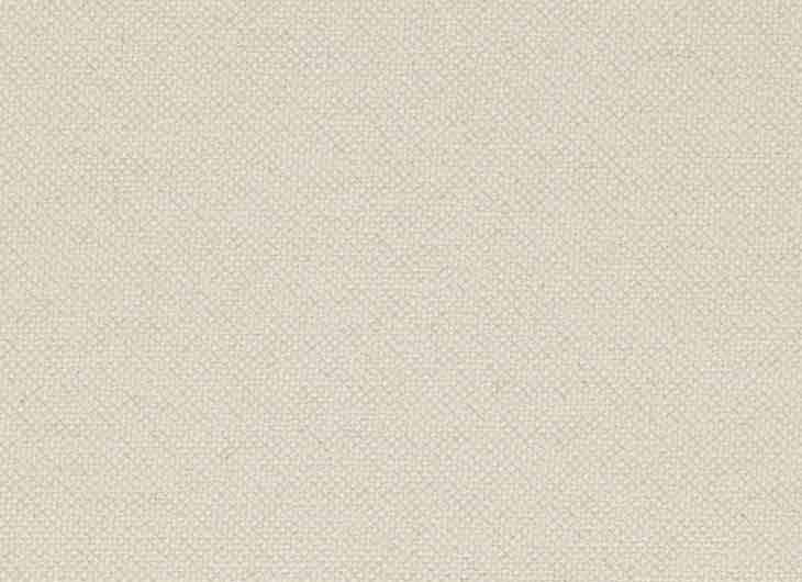 Ivory 202 Gin Fabric