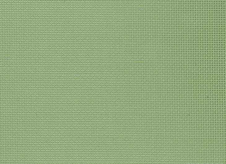Moss Green Mesh