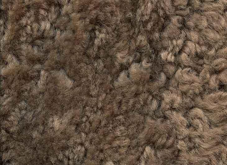 Sheepskin Sahara